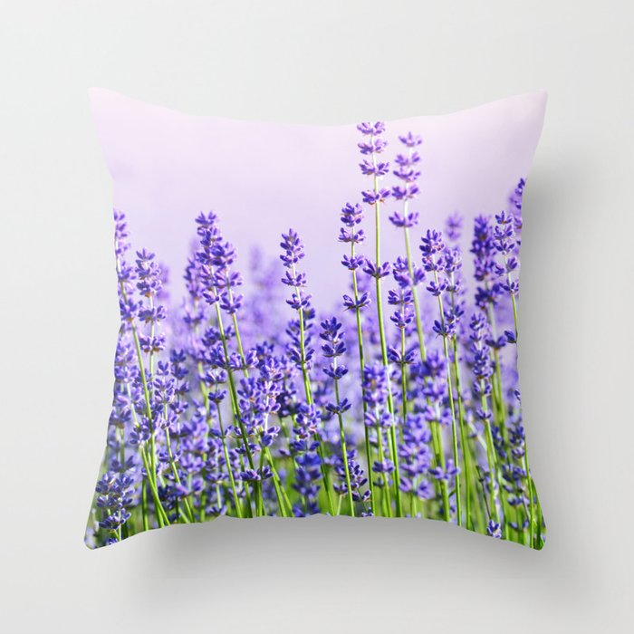 Lavender 15  Deko-Kissen