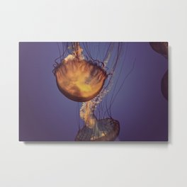 A Crabby Patty with Jellyfish Jelly please.  Metal Print