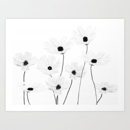 black and white cosmos Art Print