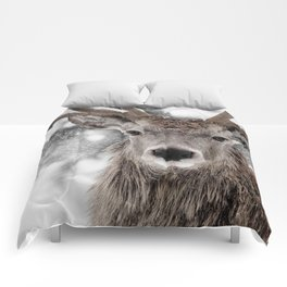 WINTER STAG Comforters