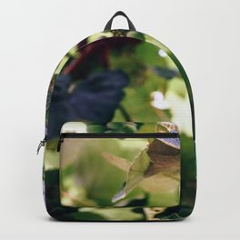 Green Grapes Backpack