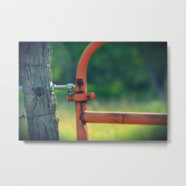 The Color Orange Metal Print