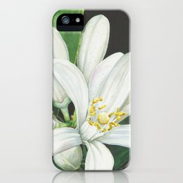 Watercolor Orange Blossom iPhone Case