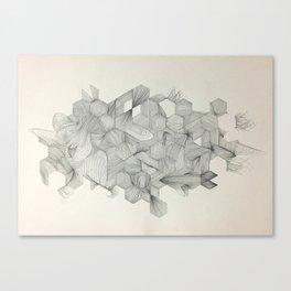 Embrace your randomness Canvas Print