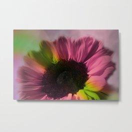 sunflower dream -02- Metal Print