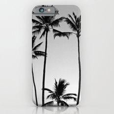 Palm Trees Kauai iPhone 6 Slim Case