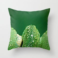San Diego, California Throw Pillow