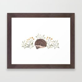 Little Hedgehog Framed Art Print