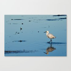 Egret walk Canvas Print