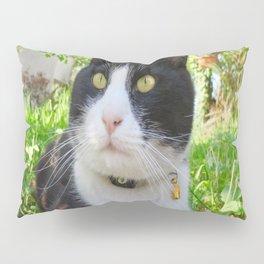 Orazio in the nature Pillow Sham