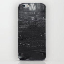 (CHROMONO SERIES) - CAMINO iPhone Skin