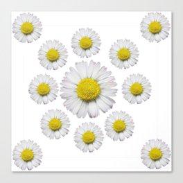 ALL WHITE SHASTA DAISY FLOWERS ART Canvas Print