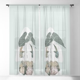 Simple offering Sheer Curtain