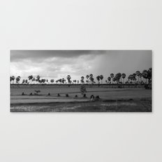 Landscape of coconuts and rice Canvas Print