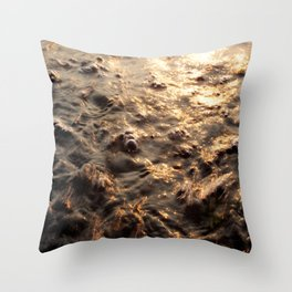 On the trail of the gold, on the ocean Throw Pillow