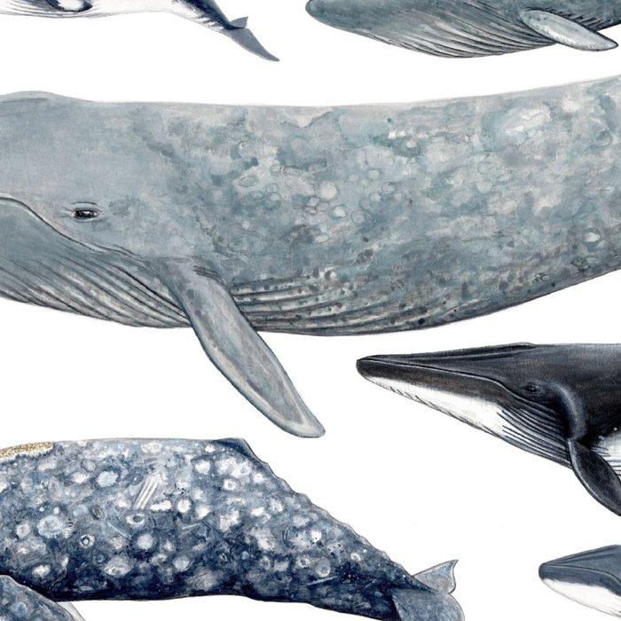 Whale diversity Leggings