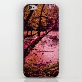Wanderland iPhone Skin