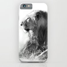 Lion in the Sunshine Slim Case iPhone 6s