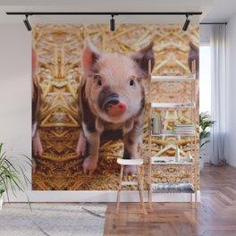 Cute Baby Piglet Farm Animals Babies Wall Mural