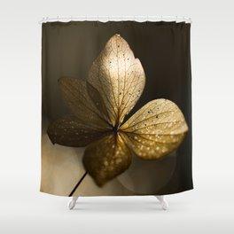 Autumn Scene - Dry Petals with Golden Sunset Light #decor #society6 #buyart Shower Curtain
