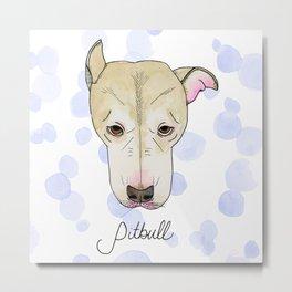 Pitbull Metal Print