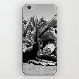 Driftwood 3 iPhone Skin