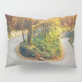 Bending Seasons Pillow Sham