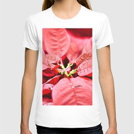 Red Poinsettia Christmas Flower Closeup T-shirt