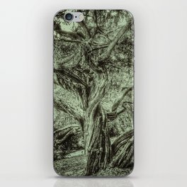 The Life of a Tree iPhone Skin