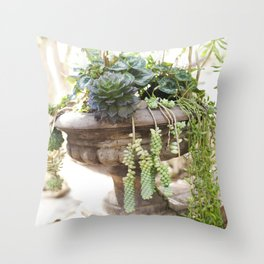 Overflowing Succulents Throw Pillow