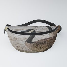 Canadian Loonies Fanny Pack
