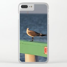 What Do You Mean No Fishing? Clear iPhone Case