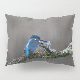 Kingfisher on a Branch Pillow Sham