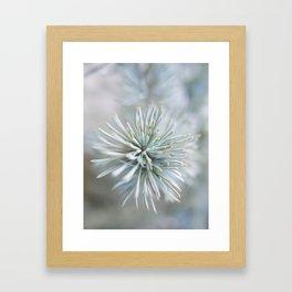 pine needles in blurry green shades Framed Art Print