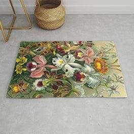 Victorian Orchids Floral Print-Ernst Haeckel Rug
