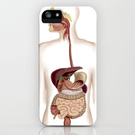 Anatomy of human digestive system. iPhone Case