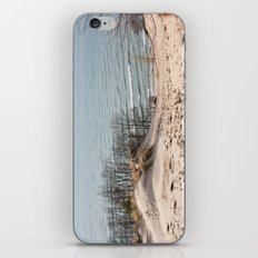 Foothill iPhone & iPod Skin