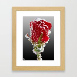 Rose Bubbles Framed Art Print