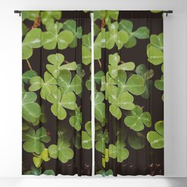 Redwood Sorrel - Nature Photography Blackout Curtain