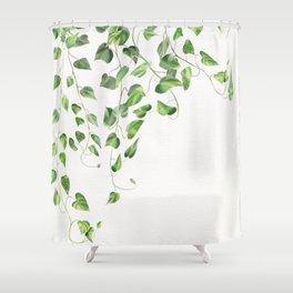 Golden Pothos - Ivy Shower Curtain