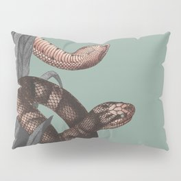 Snakes (animals collection) Pillow Sham