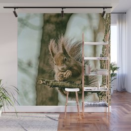 Red squirrel Wall Mural
