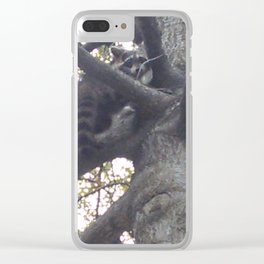 Raccoon in a Tree Clear iPhone Case