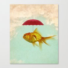 under cover goldfish 02 Canvas Print