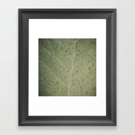 WetGreen Framed Art Print