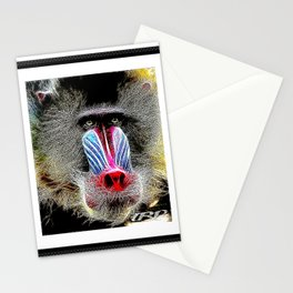 Primate Models: Mandrill Baboons 01-02 Stationery Cards