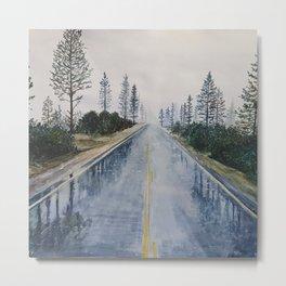 Road After the Rain Metal Print