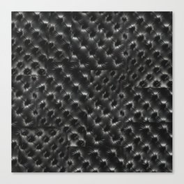 BLACK TUFT Canvas Print