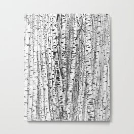 Birches ink drawing Metal Print