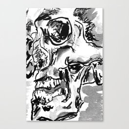 Skulls - series 2 Canvas Print